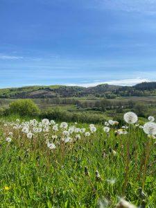 Naturrefugium Retreat